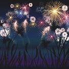 Sky Field - Fireworks by Sunflow