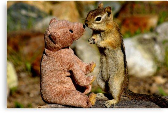 Jasper Makes a New Friend by Betsy  Seeton
