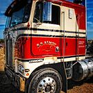 Trucking by Simon Duckworth
