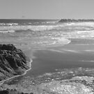 Beach Life by Courtney  Gillan