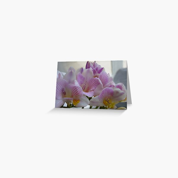 Scented Freesias Greeting Card