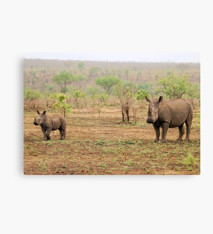 WHITE RHINOCEROS MOTHER AND BABY Canvas Print