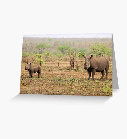 WHITE RHINOCEROS MOTHER AND BABY Greeting Card