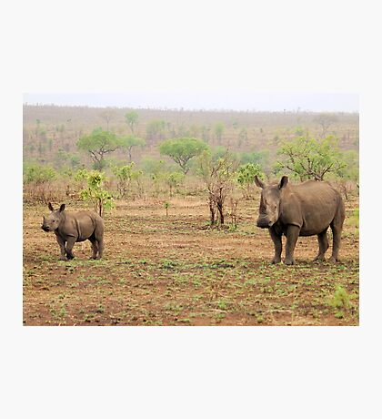 WHITE RHINOCEROS MOTHER AND BABY Photographic Print