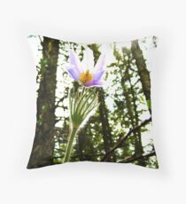 Flight of Icarus Throw Pillow