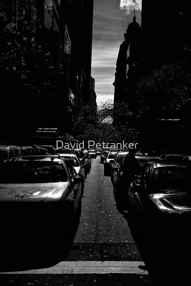 Pitt by David Petranker