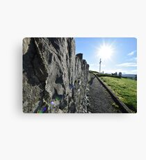 Famine Graveyard, Tipperary Town, Tipperary Canvas Print