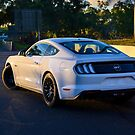 Mustang on Mt Panorama by Stuart Row