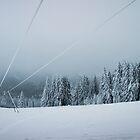 Blue Winter by Dominika Aniola