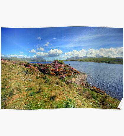 Connemara landscape Poster