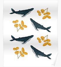 Póster Patrón de ballenas y flores felices