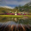 Teich bei Brookgreen mit Spezialeffekt von TJ Baccari Photography