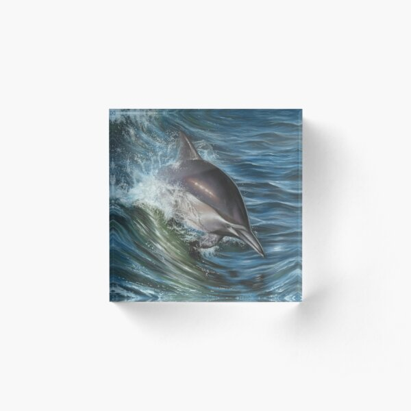 Dolphin Portrait Acrylic Block