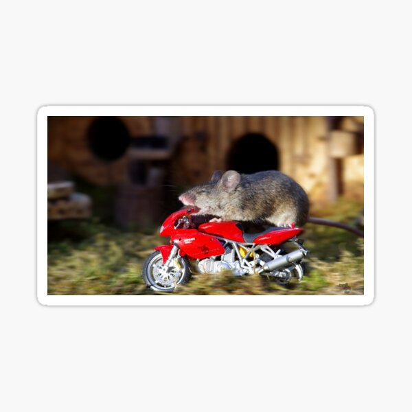 Biker Mouse - make it stop is to fast. Sticker