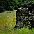 Fireplace in the Field by Colleen Drew