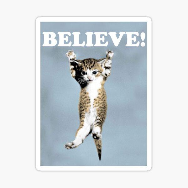 Believe Cat Poster Sticker