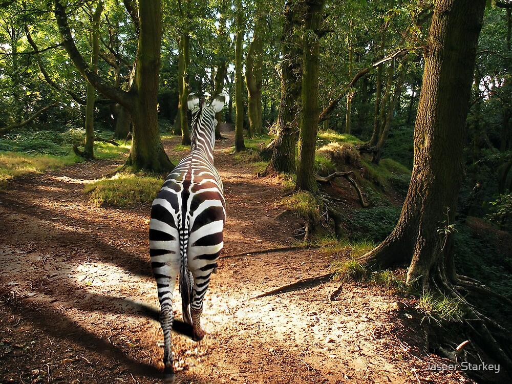 English Zebra by Simon Groves