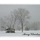 "Merry Christmas-""Undercover"" by artgoddess"