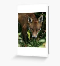 The Red Devil - None Captive Greeting Card