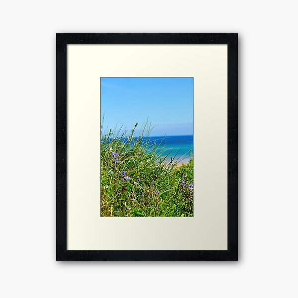 Grass and Sea Framed Art Print