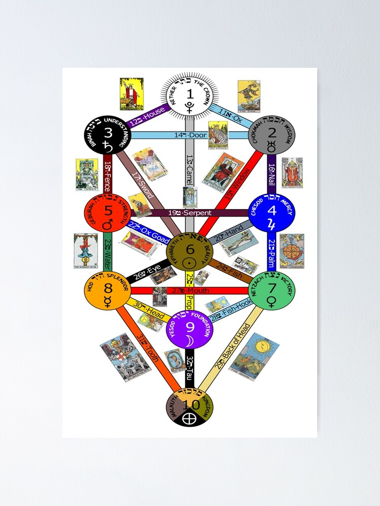 Tree Of Life Kabbalah Poster By Aggro Redbubble To wit, by that decree, the son born of כֶּתֶר became the father of mankind. redbubble