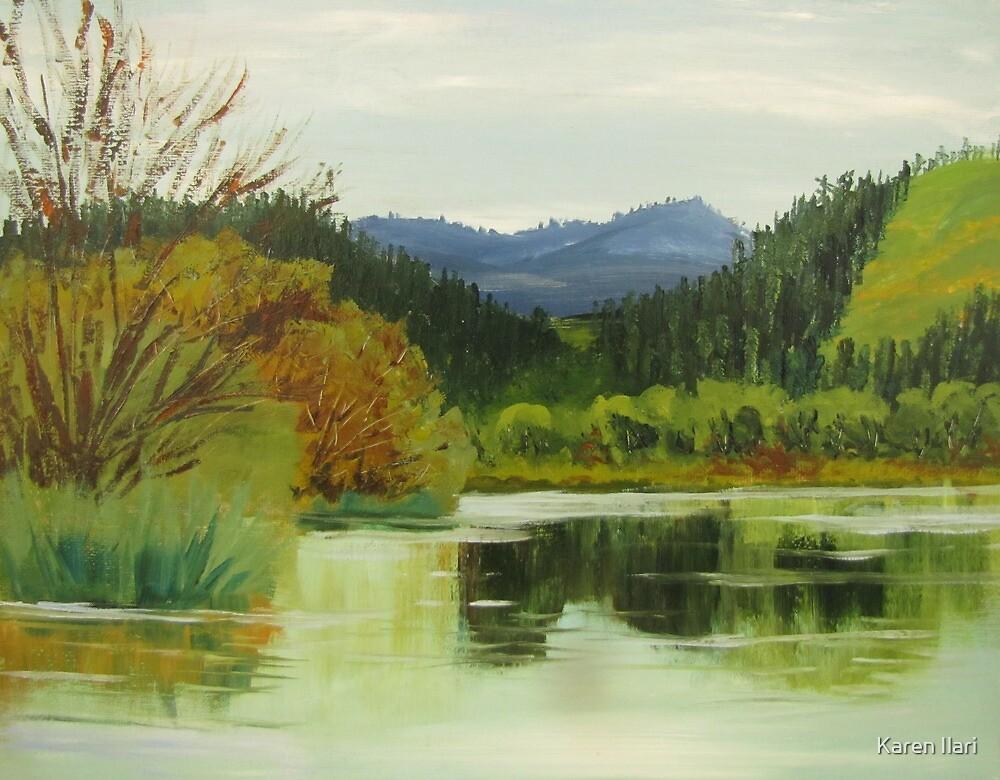 Plat I Reservoir 2 by Karen Ilari