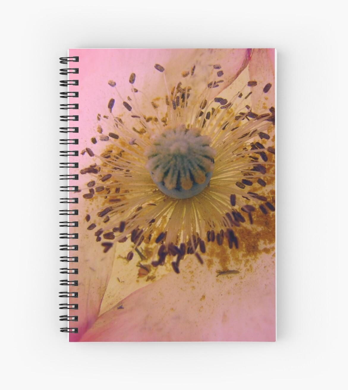 Poppy Pollen Dust by Jean Gregory  Evans