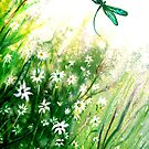 Daisies and Dragonfly by Linda Callaghan