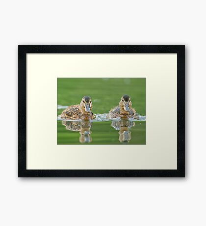 And the Winner is ... Framed Print