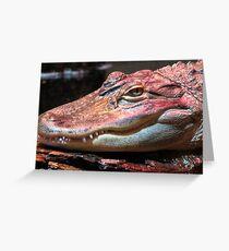 Red Gator Greeting Card