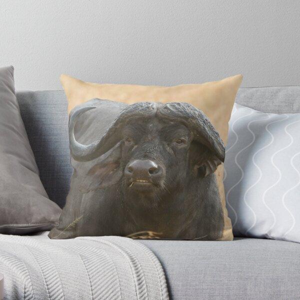 African Buffalo  Throw Pillow