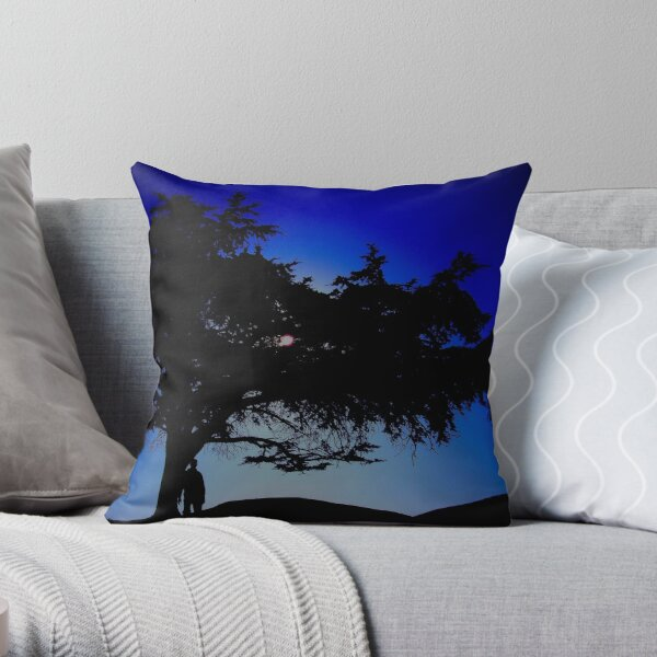 The 25 Year Visit Throw Pillow