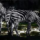 Two Zebras by miroslava