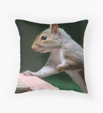 Little Visitor Throw Pillow