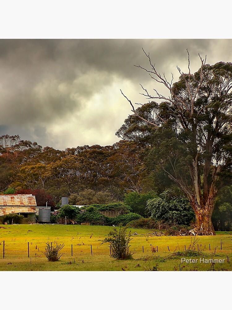 Country Farm by PeterH