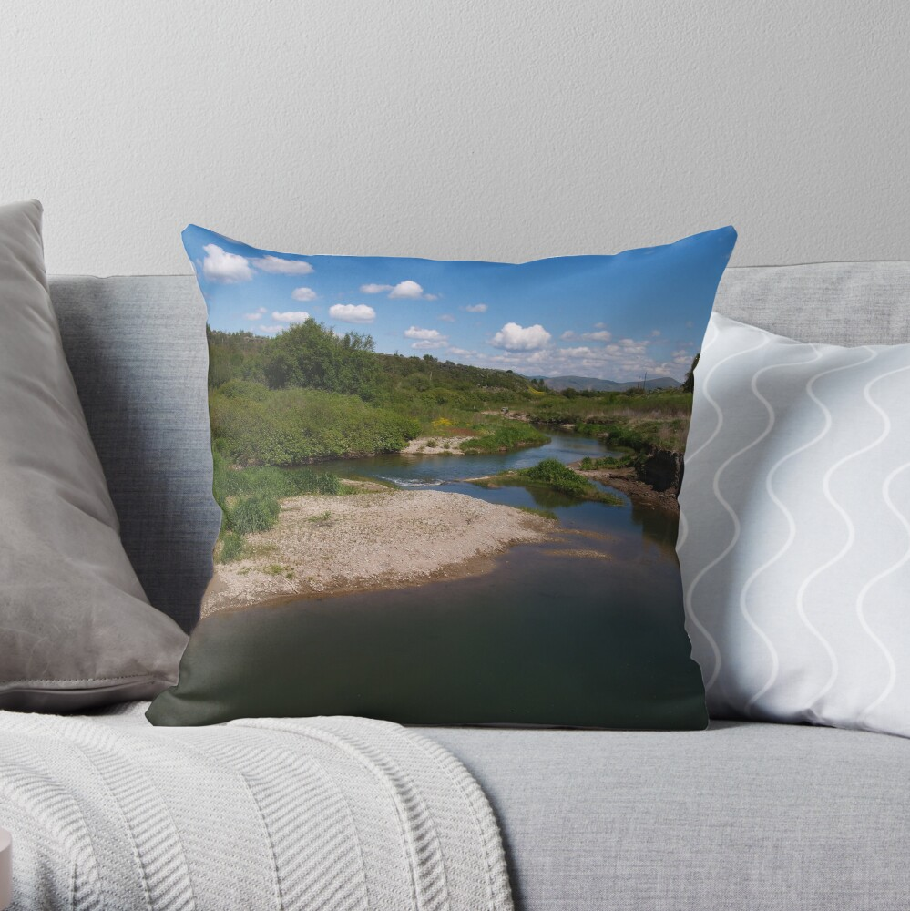 Pausing by Pebble Creek Throw Pillow