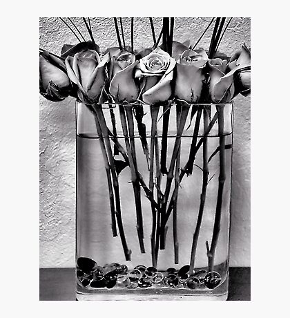 Roses in B&W Photographic Print