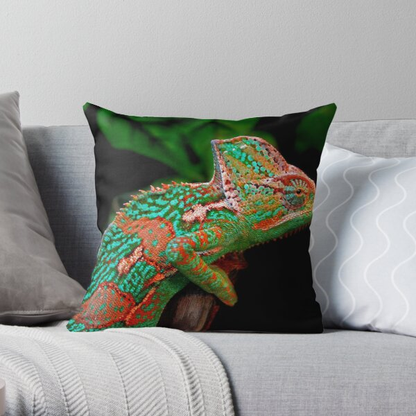 Multiple Personality Disorder Throw Pillow