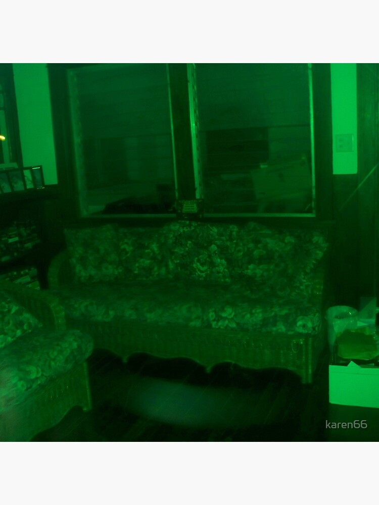 If My Living Room Were Green von karen66