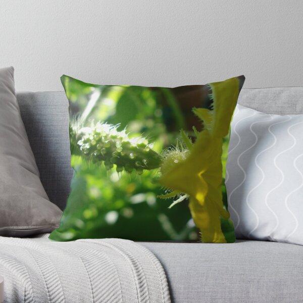 baby cucumber  Throw Pillow