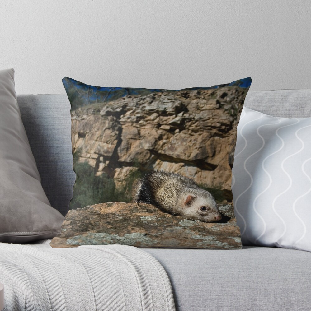 The Explorer. Throw Pillow