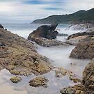 Burgess Beach Forster 827 von kevin Chippindall