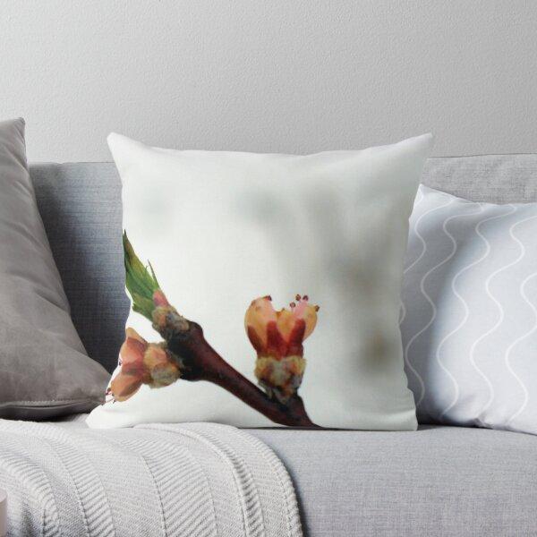 no peaches this year Throw Pillow