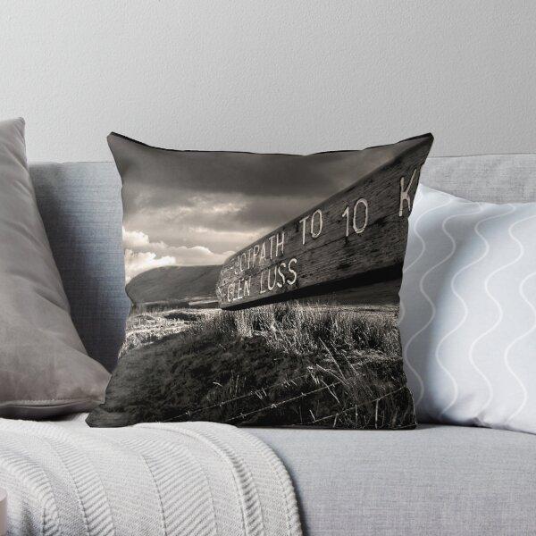 The Long Way Home Throw Pillow