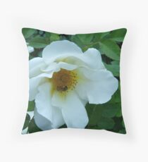 I'LL BEE SEEING YOU IN SPRINGTIME Throw Pillow