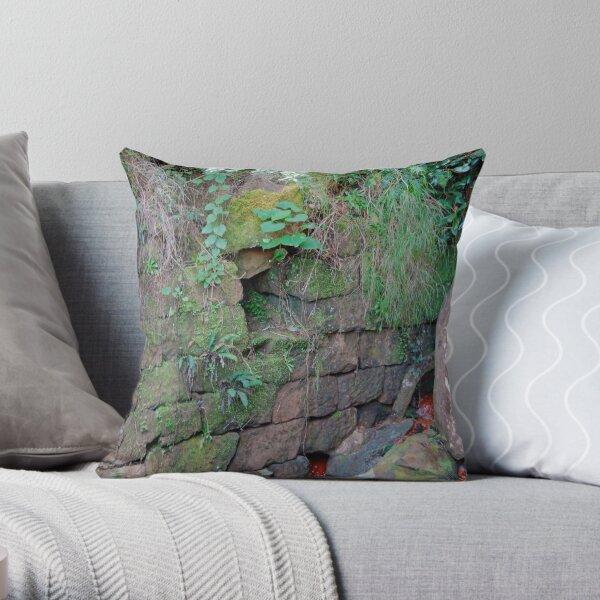 Rock Culvert of the Thomas James Bridge - Great North Road Throw Pillow