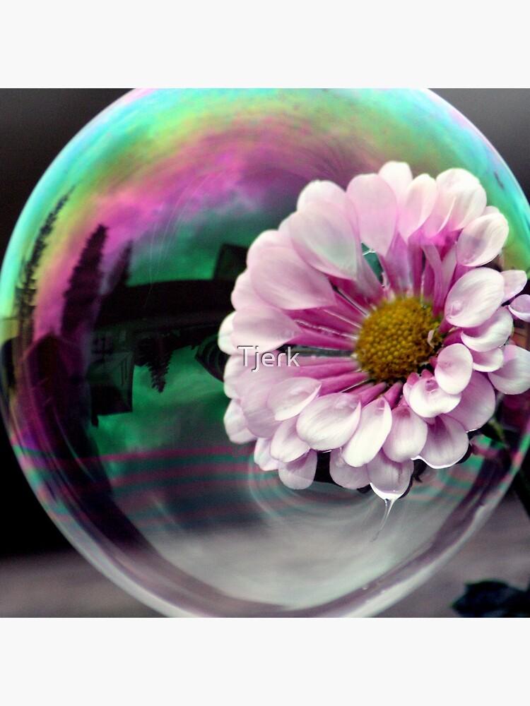 Color flower in a bubble by Tjerk
