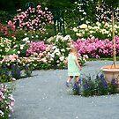 Walking In the Rose Garden by Bernadette Claffey