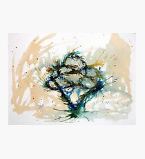 Our entwined hearts Photographic Print
