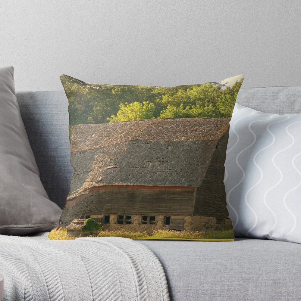 Soul Wrinkles Throw Pillow